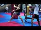 кикбоксинг тренировка
